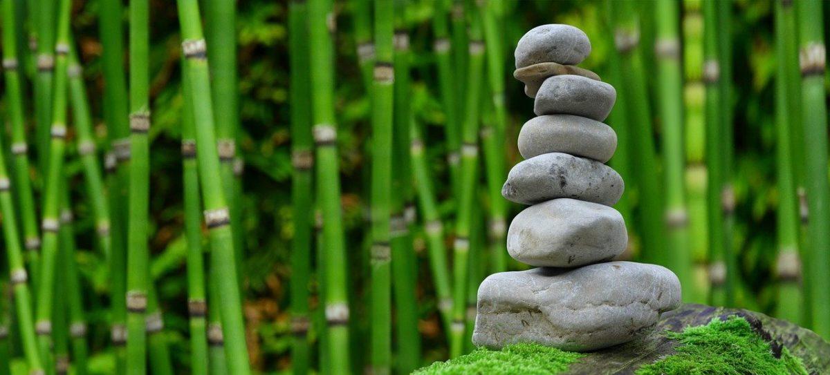 Śliczny ,a także schludny zieleniec to zasługa wielu godzin spędzonych  w jego zaciszu w toku pielegnacji.